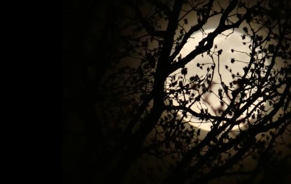 Vístete de noche amor