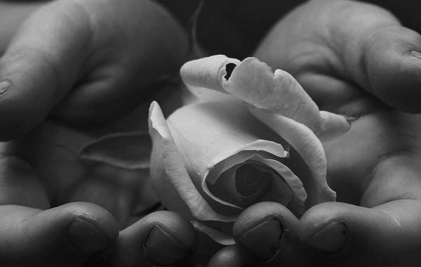 El acorde de tus manos – Adagio ma non troppo – Inma J. Ferrero