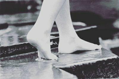 Siempre camino…